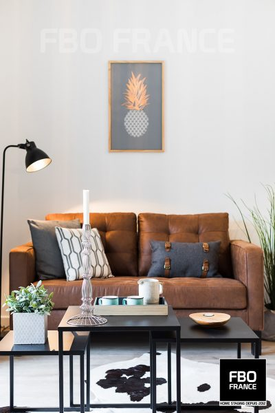 home staging salon fbo france Tours appartement témoin